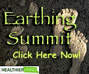 Earthing-Summit-Image-Click