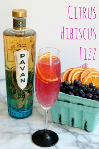 Citrus-Hibiscus-Fizz-recipe