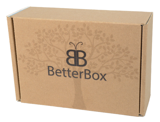 BB-Box-closed-left