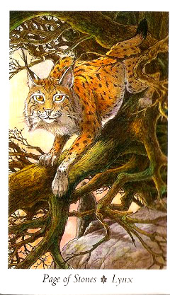 page-of-stones---lynx