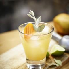 Cinco de Mayo Cocktails:  Patrón Steps In with Great Recipes!