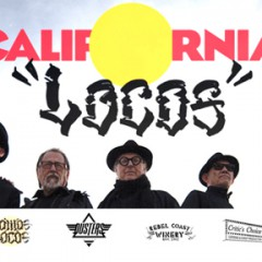 "California Locos  Open  ""Somos Locos"" at Manhattan Beach Art Center 3/18 1-9 PM"