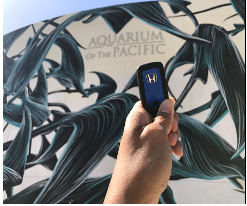 SoCal Honda's Helpful Guys in Blue Will Hit Aquarium of the Pacific with Random Acts of Helpfulness May 6!
