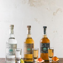 Celebrate National Tequila Day  with George Clooney's & Rande Gerber's Casamigos Tequila!