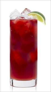 la-pinta-pomegranate-cocktail-la-pinta-paloma