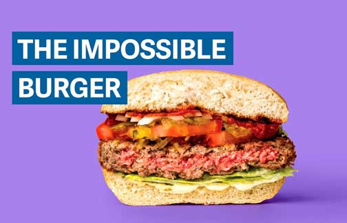 iwebmpossible.burger