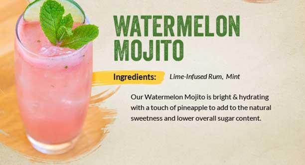 4watermelon-mojito