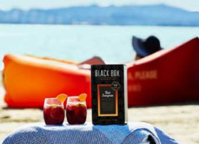 Celebrate the Summer  Days with Black Box Red Sangria + the NEW Lounger to Go With It!
