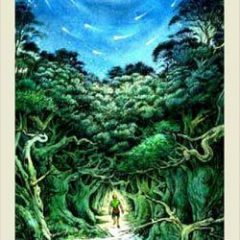 Tarot for week of Dec 24- 30! What Dreams Are Worth (or How the Magic Reveals Itself!)