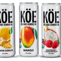 Want to Add Kombucha to Your Diet? Try KOE! 6 Flavored Organic Kombuchas that Taste GREAT!