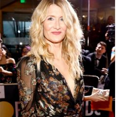 Celeb MA Simone Siegl Shares 411 of Laura Dern's Look for Golden Globes! Armani Beauty!