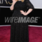 Secrets of the Red Carpet: Adele's Armani Beauty's Breakdown