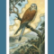 Lisa Greenfield Shares Tarot of the Week  (12/21-12/27)+ of the Day #guestblog