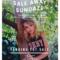 Bargain Alert: Wasteland Sample Sale In Studio City on 9/1.12-5 PM  HUSTLE for Savings!