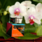 Bargain  Alert!   Buy Stimul8 Transformation Skin Treatment for 50% Off MSRP + FREE Ship!